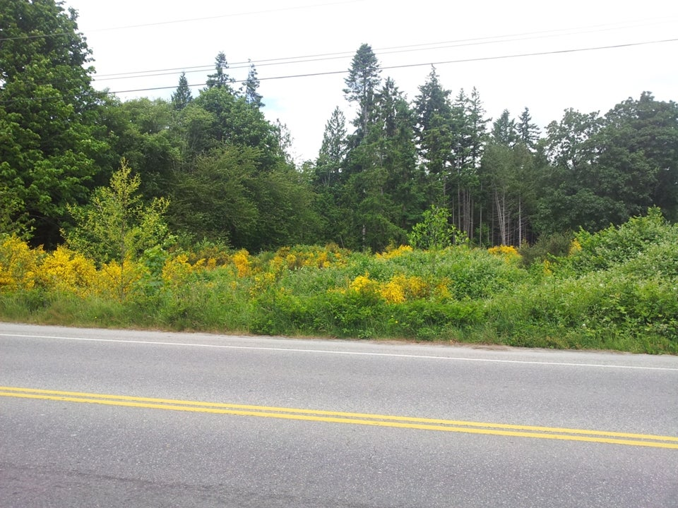 Lot 1 Sunshine Coast Hwy, Davis Bay BC V0N3A0 - Sechelt District Land for sale(V1011828) #2