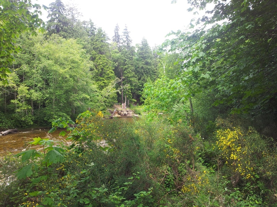 Lot 1 Sunshine Coast Hwy, Davis Bay BC V0N3A0 - Sechelt District Land for sale(V1011828) #5